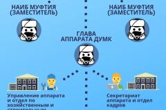 4_Структура-ДУМК