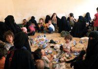 Родители просят помочь вернуть дочерей и внуков из Сирии