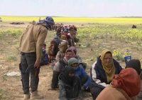 Турция депортирует более двух тысяч боевиков