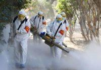Что значит пандемия